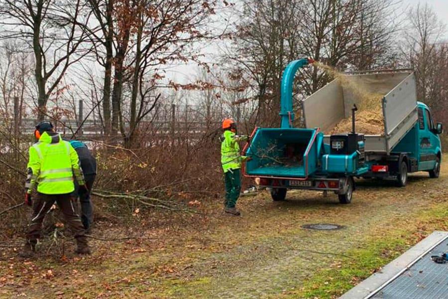 Stein-und-Garten-GmbH-Filderstadt-Baumschnitt-Haeckseln