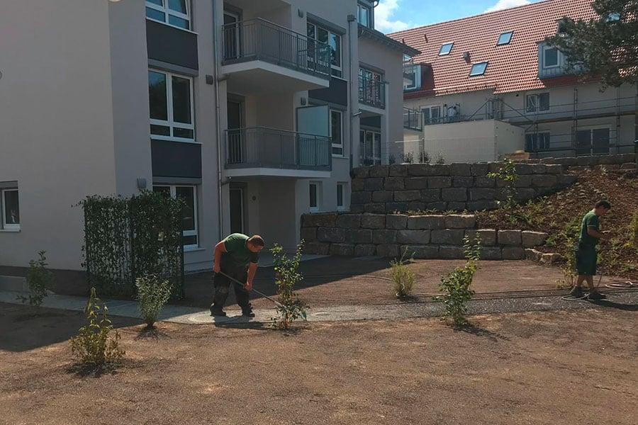 Stein-und-Garten-GmbH-Filderstadt-Einpflanzen